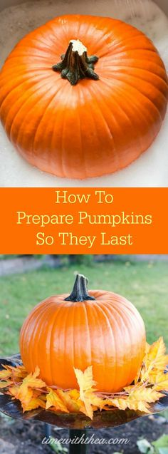 How To Prepare Pumpkins So They Last ~ Stop pumpkins from spoiling by preparing them with this easy 2-step treatment using spray on outdoor water repellent. A simple idea! / Time With Thea