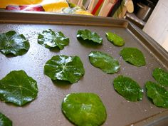Nasturtium Chips - Wash and thoroughly dry leaves. Coat in olive oil (a little goes a long way), place on a cookie sheet, and add a dash of salt. - Bake at degrees Fahrenheit for about 10 minutes (until brittle). Kale Chip Recipes, Herb Recipes, Cooking Recipes, Edible Plants, Edible Flowers, Edible Garden, Flower Food, Dehydrated Food, Wild Edibles