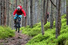 The video features some brilliant Scottish riding on natural singletrack and some great camera work by film maker Calum Darling. Oh and as it's Torridon you can expect some pretty spectacular scenery too! WithSweet ProtectionridersAndy BarlowofDirt SchoolandAndy McKennafromGo Where Scotlandand not forgettingMatt CoxfromAlpine BikesInnerleithen. Torridon from Alpine Bikes on Vimeo.