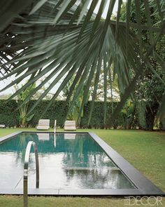 A Florida pool with soapstone coping and sleek steel railings.