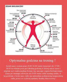 Optymalna godzina na trening!!!