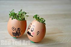 "A childhood ""Classic"" Spring Activity: growing cress heads. It was so fun. It went SO QUICKLY. The kids adored it. Nature come gardening come science come crafts.. all in one!"
