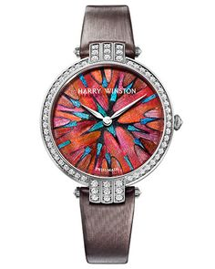 Premier Feathers watch-be still my heart.  Incredible