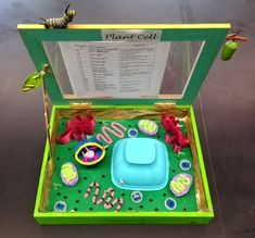 Designed By Youth Pollicita Middle School: Animal And Plant Cell Models By Mr. Plant Cell Project Models, 3d Plant Cell Model, 3d Animal Cell Project, 3d Cell Model, Edible Cell Project, Plant Cell Structure, Cell Model Project, Cell Project Ideas, Plant Cell Diagram