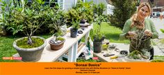 """SET YOUR DVR'S FOR MONDAY! Landscape and garden designer, Shirley Bovshow  presents on """"Bonsai Basics."""" Learn how to get started on a simple, first bonsai tree!"""