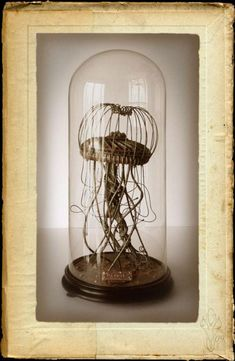 bell jar | steam punk jellyfish