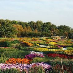 Botanical Garden , Karaj , Iran