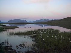 Abisko National Park by MattHartzell, via Flickr