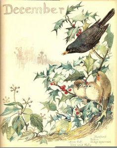 Holidays, Mary Christmas, Cards, Text & Clip Art...love the little chicks