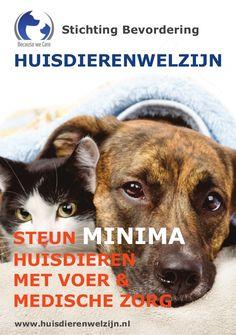 Steun MINIMA huisdieren in acute medische nood by Stichting Bevordering Huisdierenwelzijn via slideshare