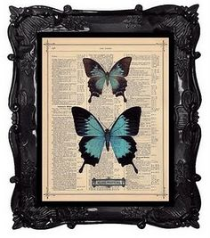 framed butterfly on dictionary  good idea to use my frames like this