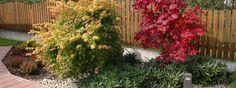Realizované návrhy zahrad | Okrasna-zahrada.cz, návrhy a realizace zahrad Garden Architecture, Sidewalk, Plants, Lawn And Garden, Side Walkway, Walkway, Plant, Walkways, Planets