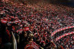 Benfica - Busca do Twitter