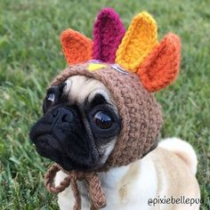 What do you mean they eat the turkey.... I'm the turkey!!!! Photo by @pixiebellepug  Want to be featured on our Instagram? Tag your photos with #thepugdiary for your chance to be featured.