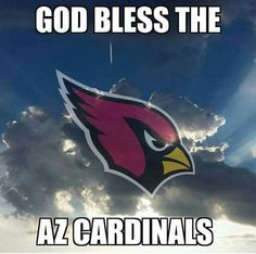 Arizona Cardinals Super Fans 2015 #BirdGang #AZLadyBirds