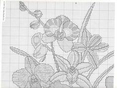 Gallery.ru / Фото #1 - Orchids - 777m