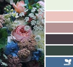 { flora palette } image via: - Design Seeds. Colour Pallette, Colour Schemes, Color Combos, Color Patterns, Design Seeds, Color Blending, Color Mixing, Color Concept, Color Balance