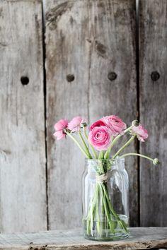 Forever Love: Litt rosa