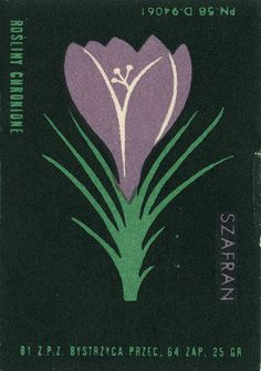 Hungarian matchbook art from Jane McDevitt Plant Illustration, Graphic Design Illustration, Vintage Fireworks, Matchbox Art, Vintage Stamps, Art Graphique, Japanese Prints, Graphic Design Typography, Art Inspo