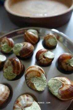 L'assiette en inox est la plus pratique (The steel plate is the most convenient)
