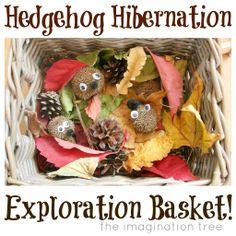 "Hedgehog hibernation sensory basket ("",)"