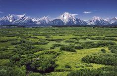 Willow Flats area and Teton Range in Grand Teton National Park