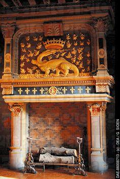 Fireplace, Chateau de Blois, Loire Valley, France,  G. Sioen