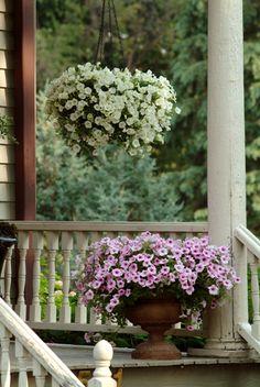 Prettied up porches