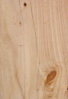 Die 30+ besten Bilder zu Holzarten   holzarten, holz, holzmuster