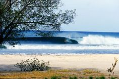 Fully guided Nicaragua surf trip and fishing vacation