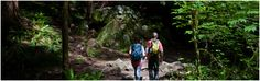 Olympic National Park Hikes and Hiking Trails in Washington - Olympicnationalparks.com