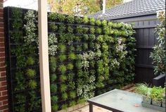 15 Fence Planters That'll Have You Loving Your Privacy Fence Again Backyard Planters, Fence Planters, Backyard Fences, Garden Fencing, Pool Fence, Hanging Planters, Vertical Garden Systems, Vertical Garden Wall, Vertical Gardens