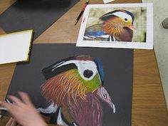 Students in fifth grade looked towards artists Chuck Close and Georgia O'Keeffe to learn how to do an accurate, up close study of an object.  Using a grid method, like Close and a cropped photograph, like O'Keeffe, they were able to create these gorgeous oil pastels drawings.  By utilizing the grid method, students were able to integrate math through the use of a ruler and measurement.  The oil pastels allowed for color mixing and layering in a brand new way as well.  The idea that they…