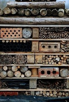 Bee house for solitary bees such as Mason Bees. Solitary bees are pollinators as well.