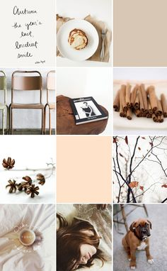 Fall mood board