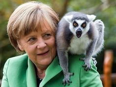 German Chancellor Angela Merkel feeds a lemur during a visit to Vogelpark Marlow in Marlow, Germany. Merkel officially opened the sqm penguin facility that will house 32 penguins, nine brown pelican and 40 Inca tern. Animal Hugs, Pictures Of The Week, Lemur, Selfie, Park, Animal Pictures, Animals Photos, Funny Animals, Germany
