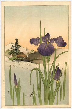 YOSHIMOTO Gesso(吉本月荘 Japanese, 1881-1936)  Iris on the Riverside