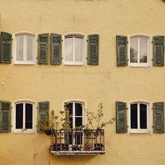 «Windows in Regensburg, Germany #windowporn»