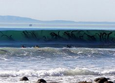 Terrifying Images Of the Ocean That Will Make You Never Want To Swim Again – Page 3 – American Upbeat