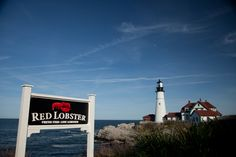 Lobster eating in Maine on Pinterest | Maine, Lobsters and Lobster ...