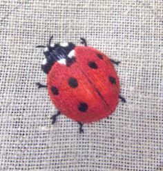 Ladybird embroidery