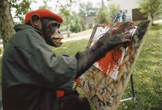 And This Chimp Being The Next Artist Prodigy! | 15 Animals Who Are Behaving Like People