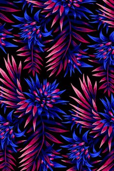 Tropical floral print design inspired by the beautiful flowers of the Aechmea Fasciata plant combined with palm leaves. Print Wallpaper, Colorful Wallpaper, Flower Wallpaper, Pattern Wallpaper, Wallpaper Backgrounds, Floral Print Design, Floral Prints, Art Prints, Tropical Prints