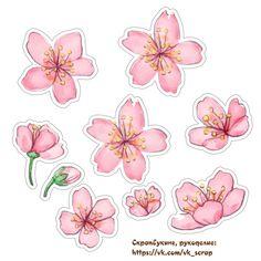 Скрапбукинг, рукоделие, Картинки с цветами, высечки