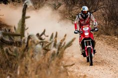 Zanol vence nas motos e mantém boa vantagem na classificação geral