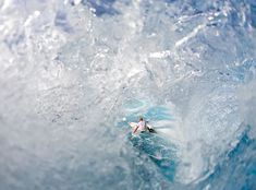 Picture of surfer Mick Fanning, seen through a wave, at Teahupo'o, Tahiti