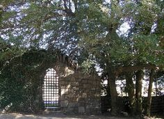 Gate - Hollywood Cemetery
