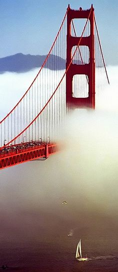 A sail under the awesome San Francisco Golden Gate bridge as it's enveloped in a cloud of fog....