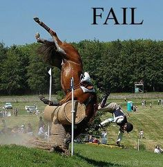 My Horse, Horse Girl, Horse Riding, Cross Country Jumps, Funny Horses, Horse Pictures, Horse Photos, Show Jumping, Show Horses