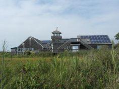 Wetland Institute, Stone Harbor, NJ 11/2013